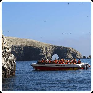Boat excursion around the Ballestas Islands