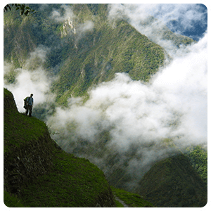 Cloud forest in the Inca Trail
