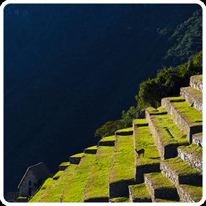 Inca Terraces in Machu Picchu