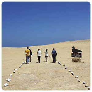Paracas Desert Tour