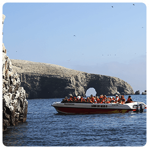 Boat excursion to the Ballestas Islands