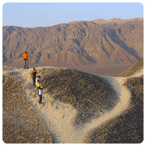 Land Tour to the Nasca Lines