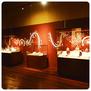 Tour to the Museums of Lima