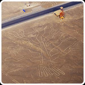 Nazca Lines - Tree figure