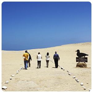 Paracas Desert land tour