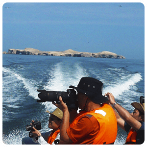 Returning from the Ballestas Islands in Paracas
