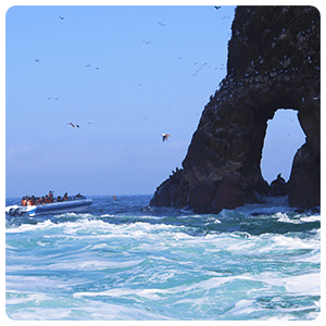 Rock formation at the Paracas Sea
