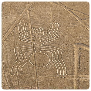 The Spider - Nazca Lines