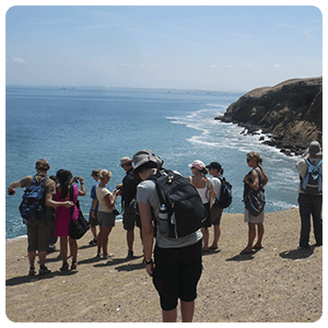 Tour to the Paracas Bay