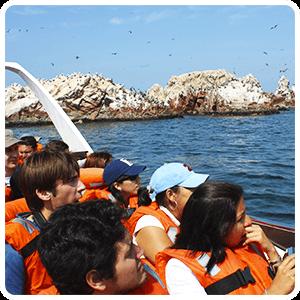 Touring around the Ballestas Islands in Paracas