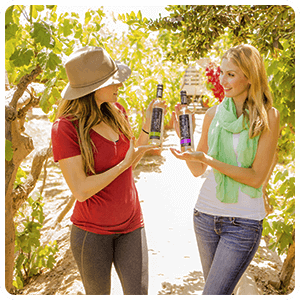 Visiting the Vineyard of Pisco
